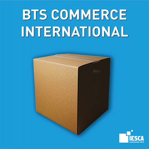 BTS COMMERCE INTERNATIONAL IESCA