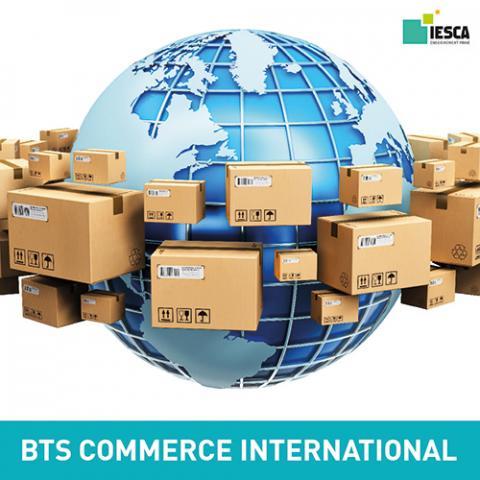 BTS COMMERCE INTERNATIONAL IESCA